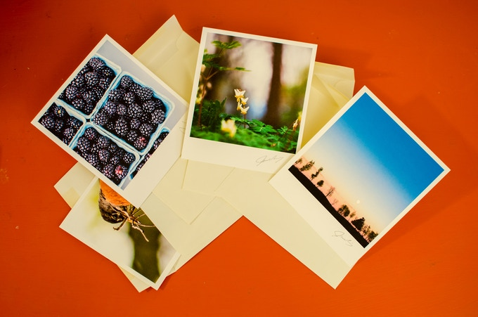 """A set of 4 signed prints from my favorites, includes gift envelops if you want to share, all are 5"""" by 5.75"""" on Mohawk Superfine Eggshell sustainably produced paper. The set varies but always includes a wildlife and landscape print."""