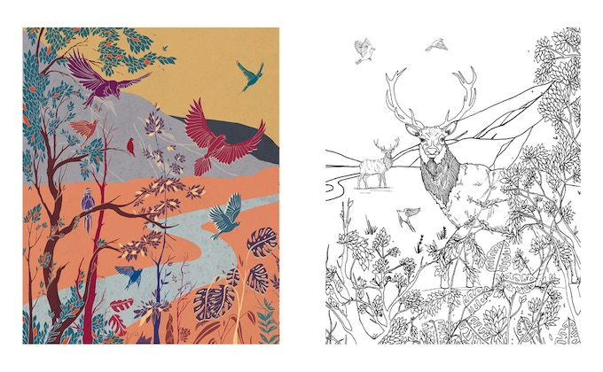 Immersed in Nature by Alex McGinn A3 colouring print set