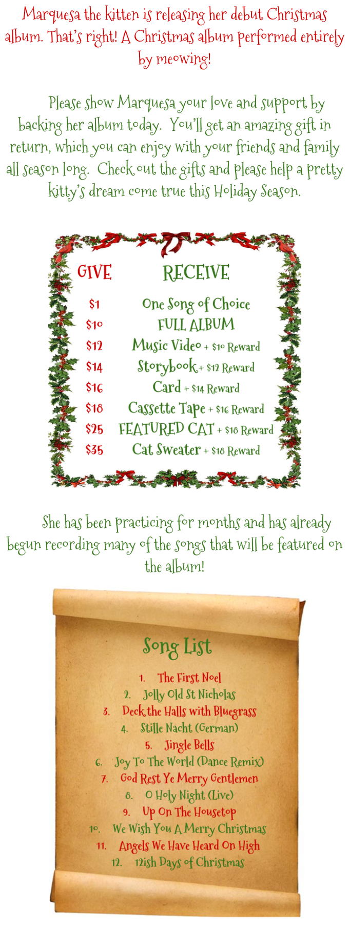 A Christmas Album for Cats, by Cats! by Marquesa the Kitten