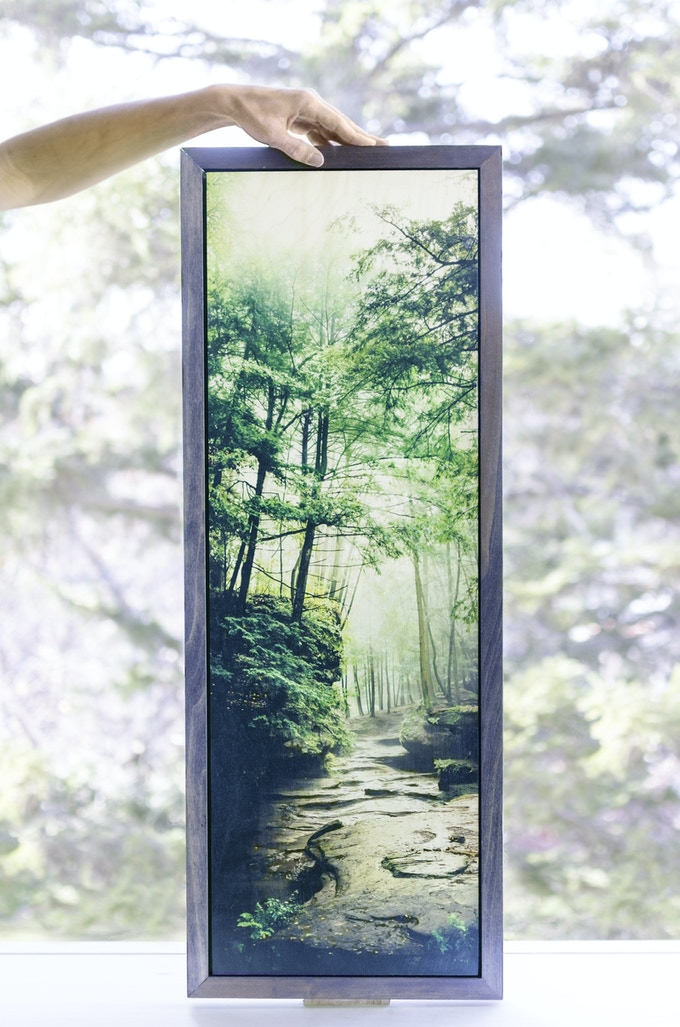 """A signed limited edition print on wood, the """"Phototropism"""" vertical panorama at 12"""" by 36"""", crafted sustainably with a hand-stained frame and ready to hang."""