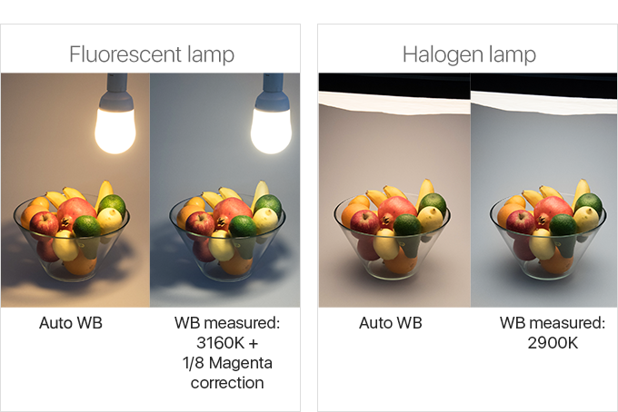 Trying to get the right White Balance with DSLR under artificial light sources where cameras often fail.