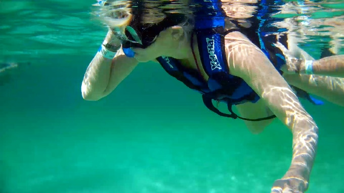 Snorkeling with the ViDi