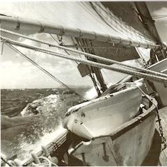 "Photo #1 - Wander Bird, on deck - 12""x12"""