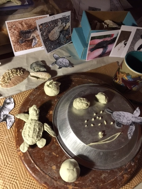 Reference photos and clay parts for hatchlings