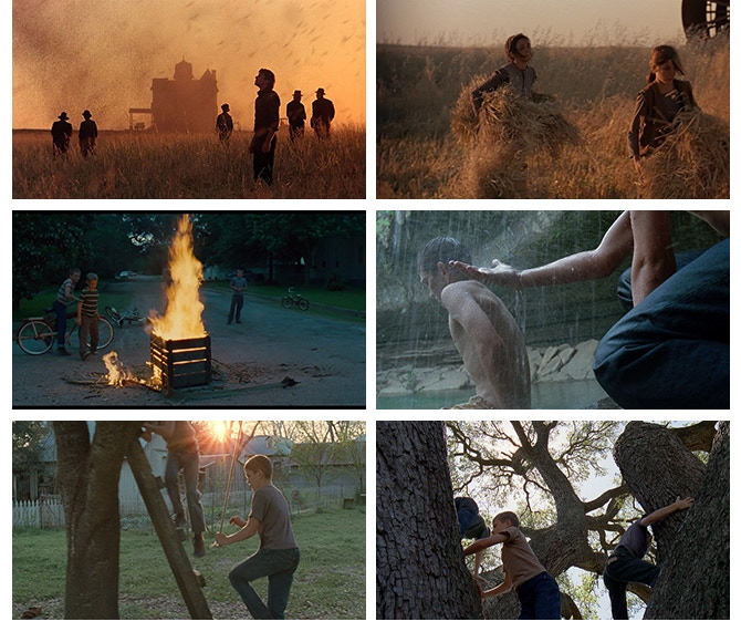 Photo Credits: 'Days of Heaven' & 'The Tree of Life'