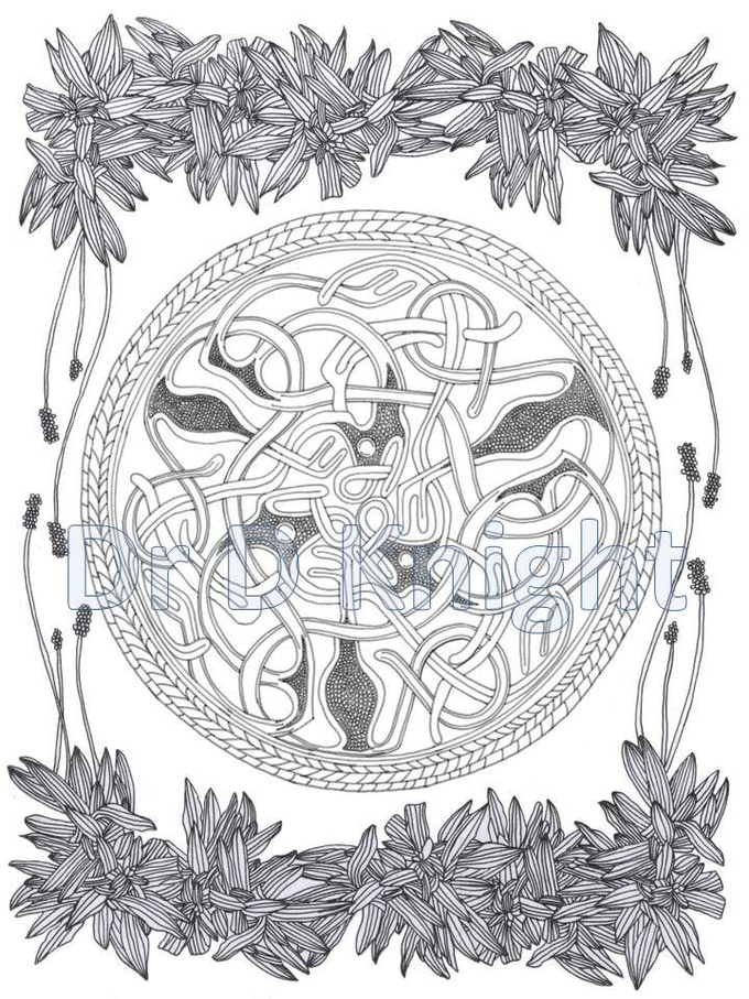 A sample page from the Viking Coloring Book showing the Traen Brooch surrounded by Ribwort Plantain
