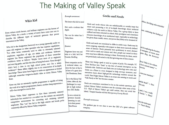 Valley Speak: Deciphering the Jargon of Silicon Valley by Rochelle