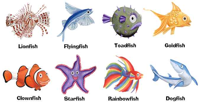 Meet the fish (illustrated by Jenny Cuthbert)