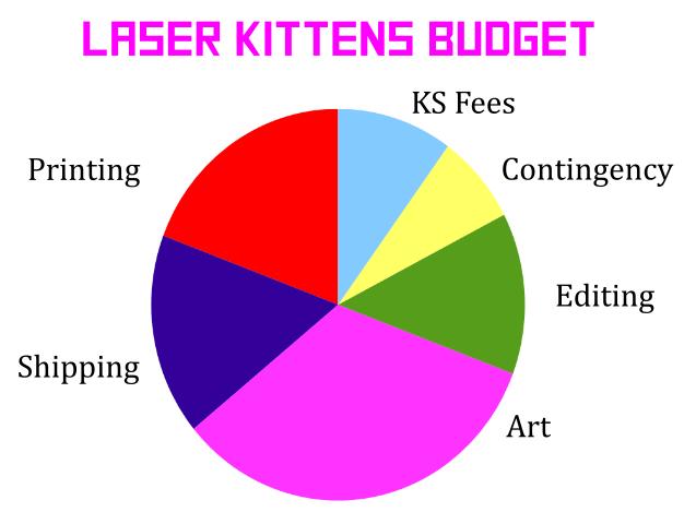 Budget breakdown pie chart