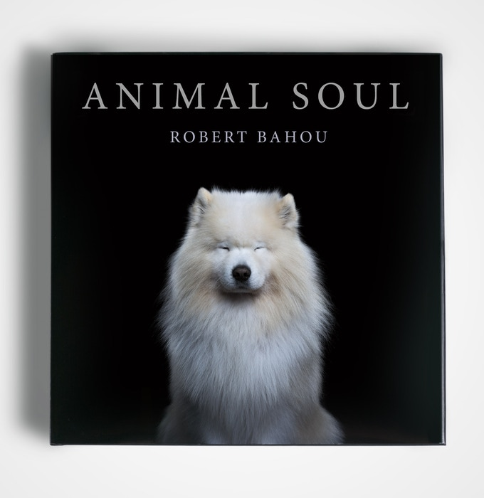 The provisional cover of Animal Soul with 'Sam' featured as the cover photograph.