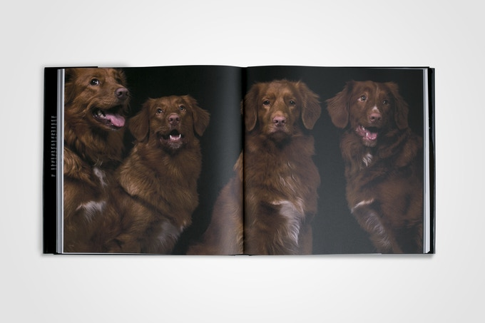 A mother and her daughters. Featured as a spread in Animal Soul. This happens to be mom's favourite.