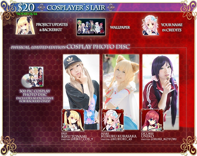 With this reward, our concept is making an image disc like you could pick up from the cosplayers if you attended Comiket in Japan. Also available as an add-on for $20