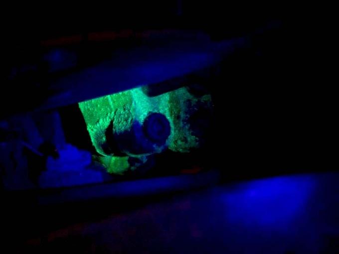 Leaking Antifreeze Detection