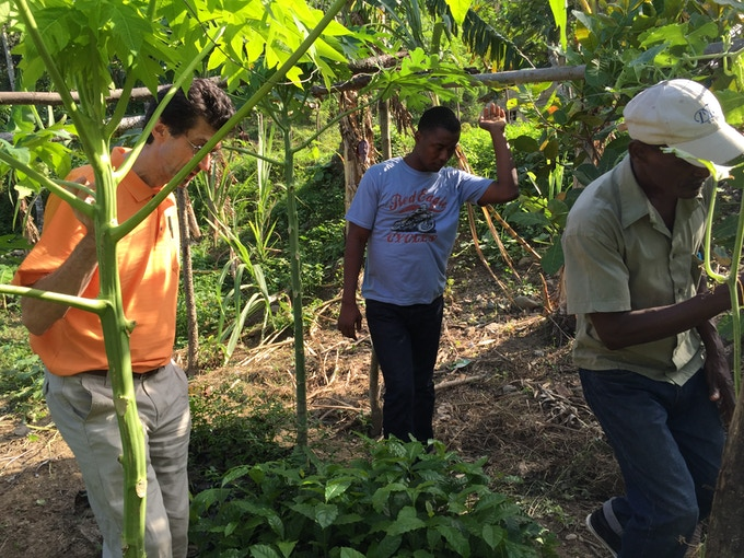 Chris and Fedner of Singing Rooster follow CAFUPBO President on a cacao farm visit