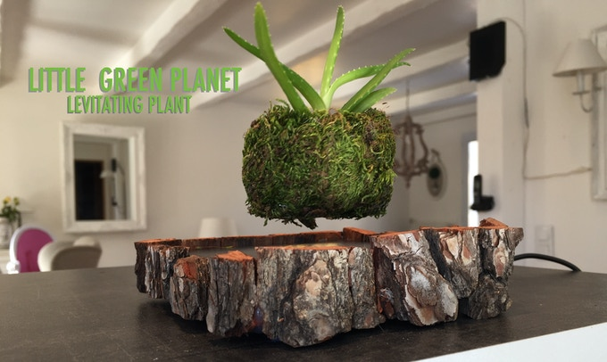 The Base floats the moss planting top, where you can grow your own small plant.