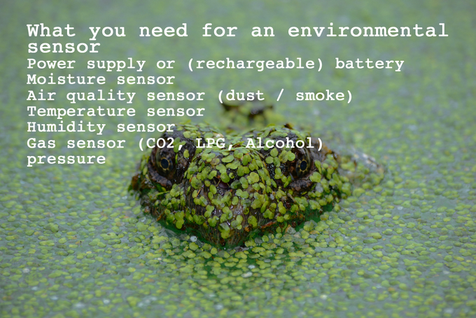 or need to monitor your pet frog?