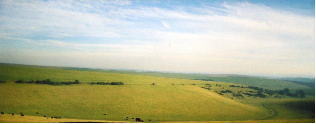 Untitled (Southdowns), 2008, 6.8 x 18.7 cm, edition of 5 plus 1AP