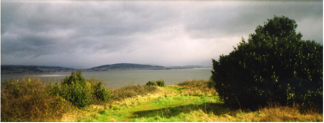 Untitled (Gower). 2008, 6.8 x 18.7 cm, edition of 5 plus 1AP