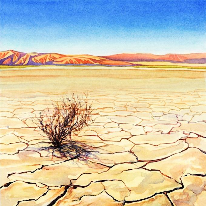 Scorching Deserts!
