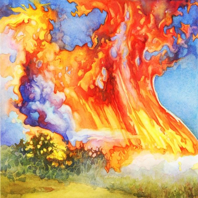 Raging Wildfires!