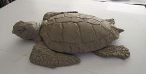 Mrs. Loggerhead left side view clay model