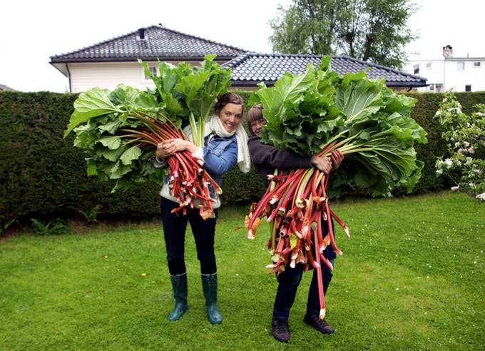 Research into local and national folklore inspired our initial ideas. These Riitta-sized rhubarb leaves turned out to be ideal locks for our homage to 'huldra', a Norwegian forest spirit.
