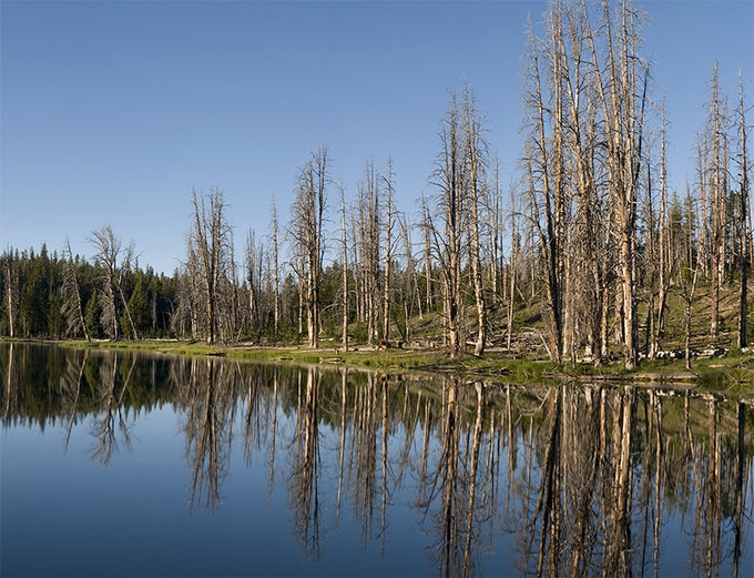 Due to the higher water level at Mirror Lake today, the spot where the Hayden Survey lined up in a pack train along the west shore is now submerged, and fires have swept across the Mirror Plateau.
