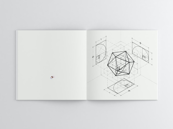 Fibonacci icosahedron