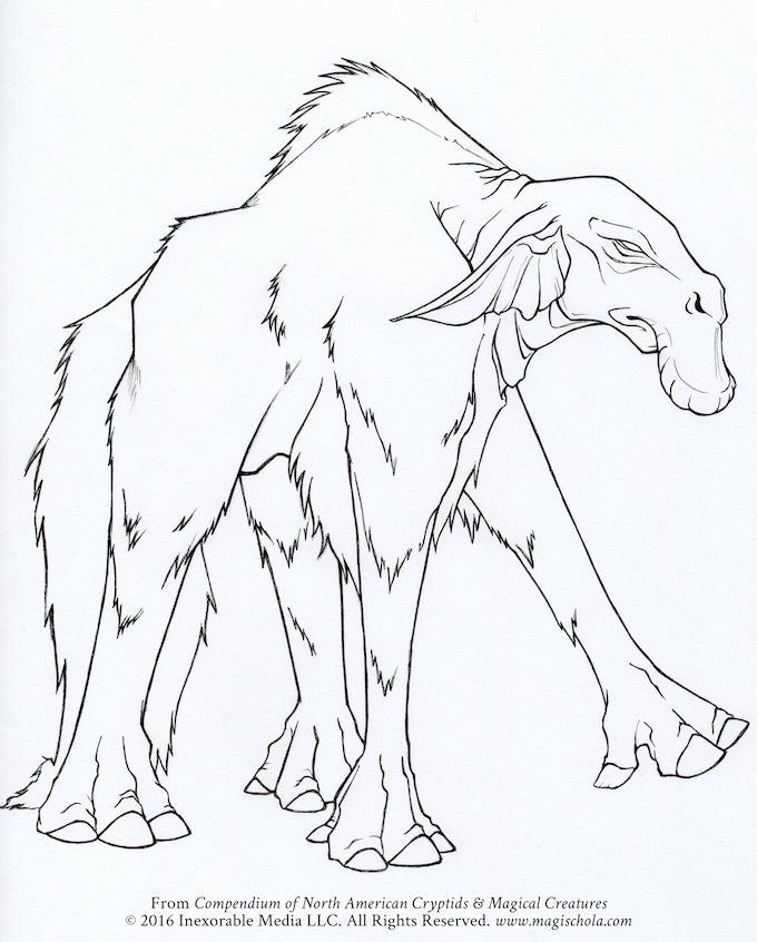 Compendium of North American Cryptids & Magical Creatures