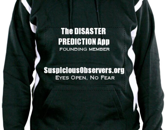 Disaster App Hoodie