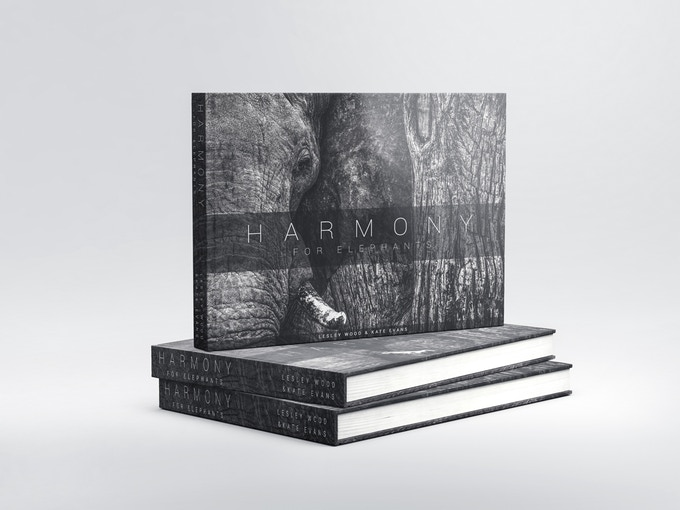 Standard Edition Book Mock-up (cover may change)