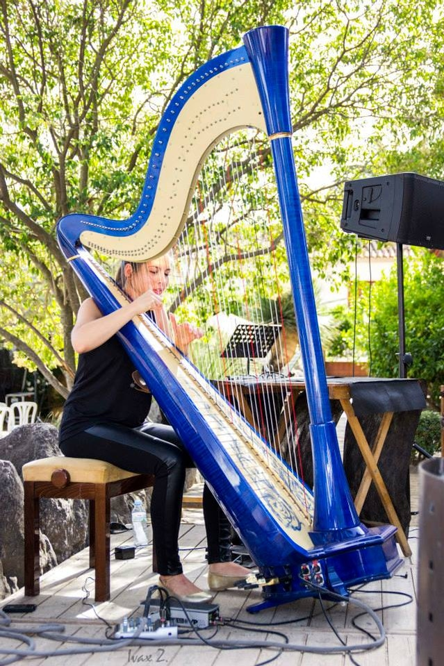 Youtube Music Video Album with an Electro-Acoustic Harp! by Lara