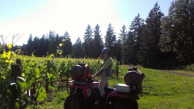 Applying some biodynamic preparations in Oregon's Willamette Valley