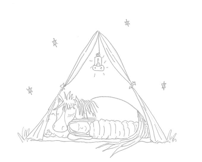 Go Horse Camping by Tania Millen —Kickstarter