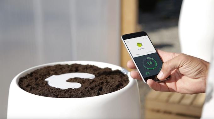 Bios Incube app