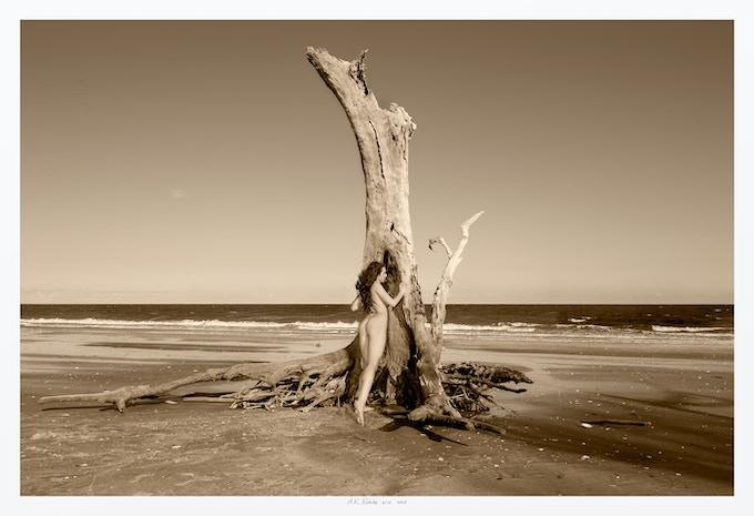 Existing 20x30 print (One Tree Beach)