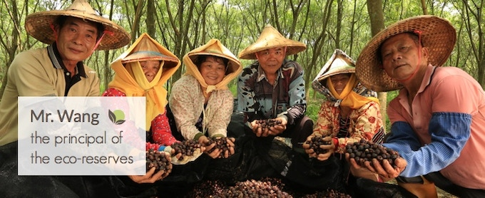 By using Soapberri, you are supporting our beautiful eco-reserves and farming communities in Taiwan!