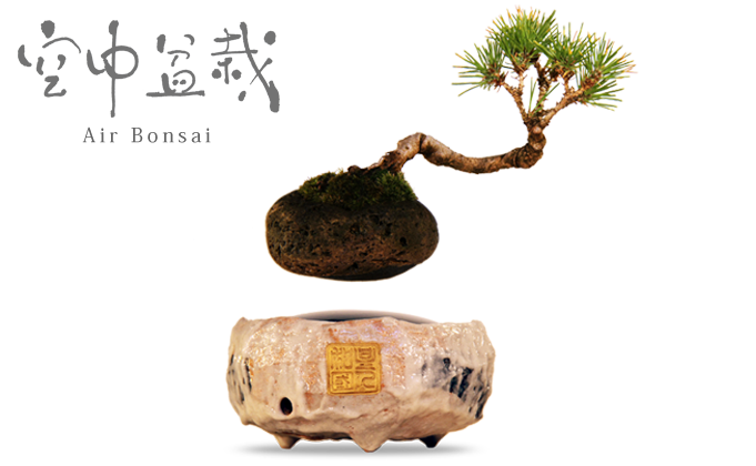 """Air Bonsai is a floating star. How would you like to plant your country's very own bonsai and make a wish on that """"little star""""?"""