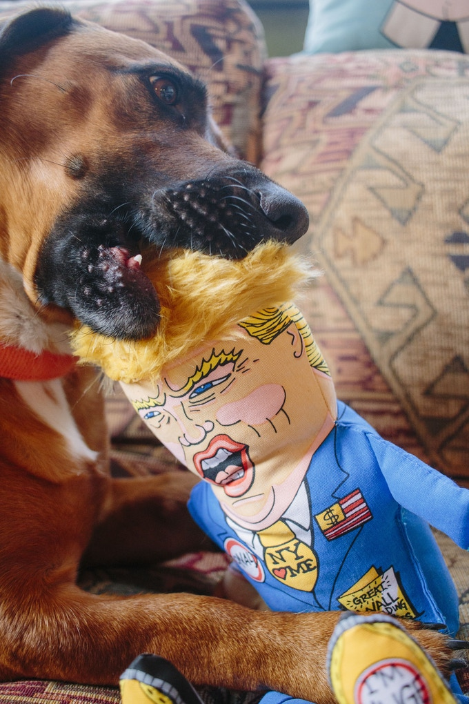 Donald Dog Toy in action with Calvin
