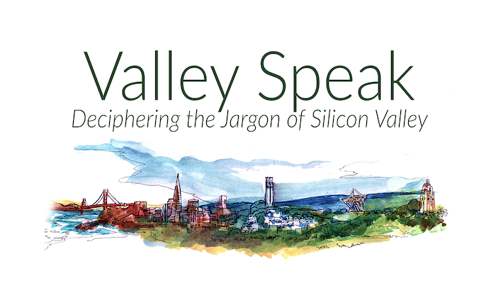 A new book dedicated to defining Silicon Valley's trickiest jargon in a way that is both rigorous and entertaining.