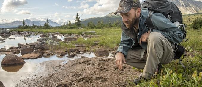 Team member Marcus Reynerson examining fresh caribou tracks.