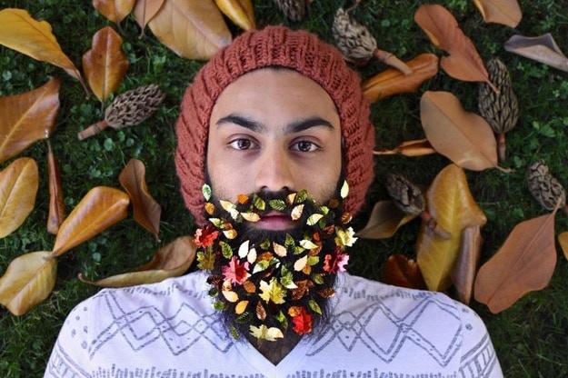 Beardsgiving