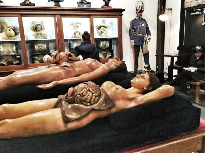 Private tour of the Morbid Anatomy Museum!