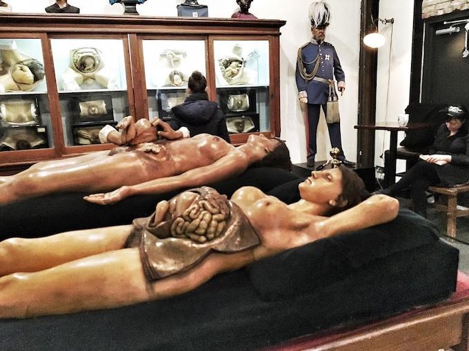 Private tour of the Morbid Anatomy Museum!