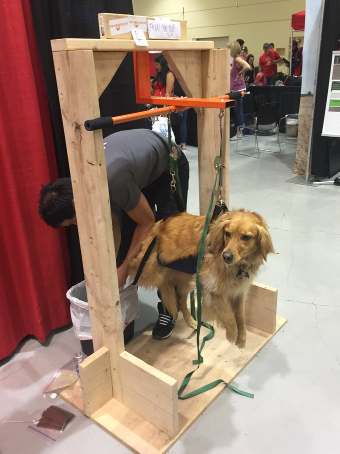 The doggie lift the easiest way to cut your dogs nails by eric the funding that we will receive from this project will go into meeting the quota set by the manufacturer this will also allow us to attend multiple pet solutioingenieria Gallery