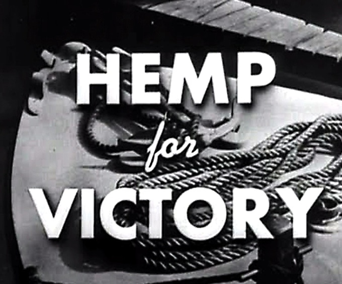 Hemp for Victory is a black-and-white United States government film made during World War II and released in 1942, explaining the uses of hemp, encouraging farmers to grow as much as possible.