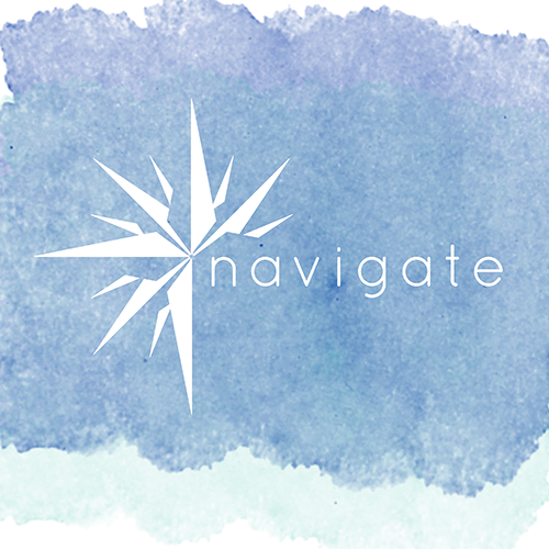 navigate guidebook - companion workbook to the lighthouse revolution book