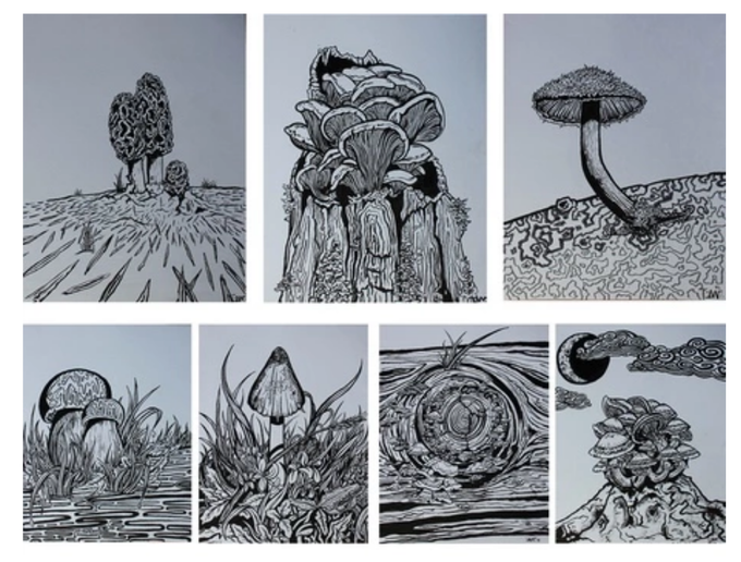 Just a few of the 32 frame worthy sumi ink illustrations