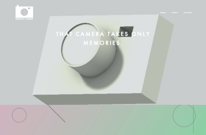 This camera captures only one memory - It does not take a photograph.