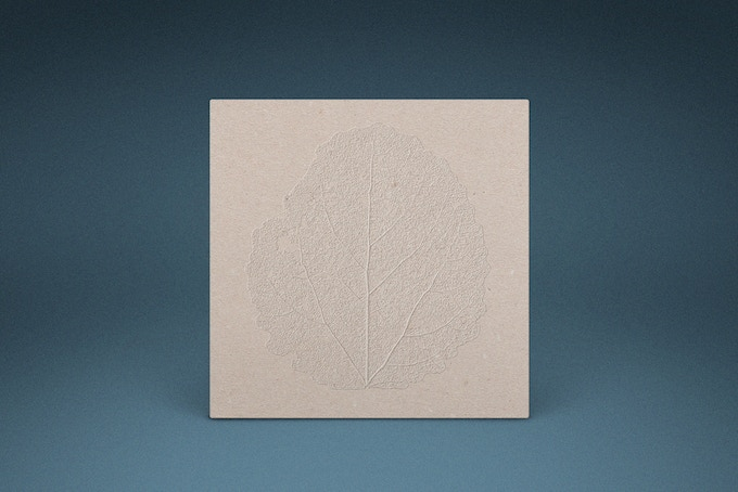 outer sleeve, hand-embossed on local recycled card stock